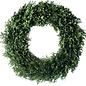 "Fresh Boxwood Wreath 24"""
