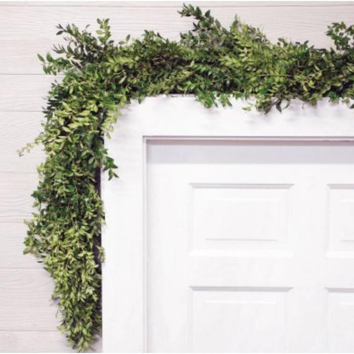 Fresh Boxwood Garland 10'