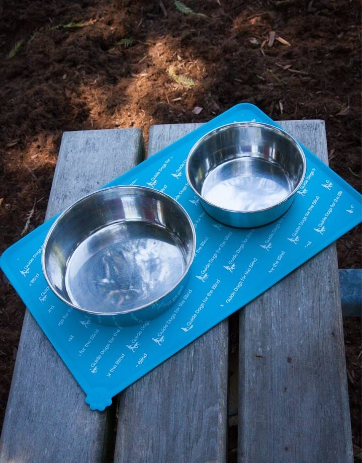 Dog Placemat - teal blue