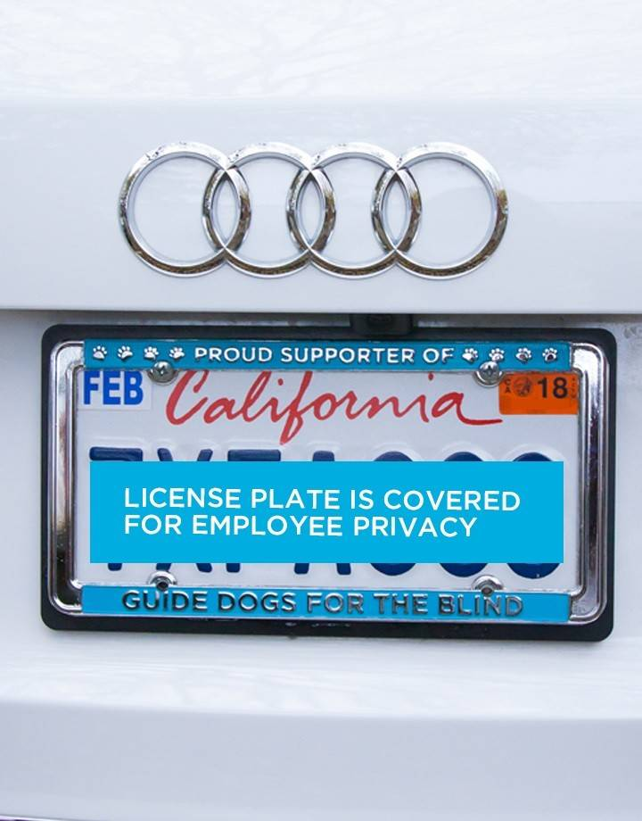 GDB Proud Supporter License plate frame-teal