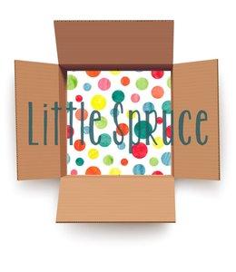 Little Spruce Mystery Box - Girl