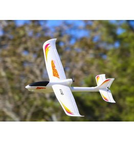 Rage R/C Tempest 600 EP RTF Airplane w/Radio, Battery, Charger