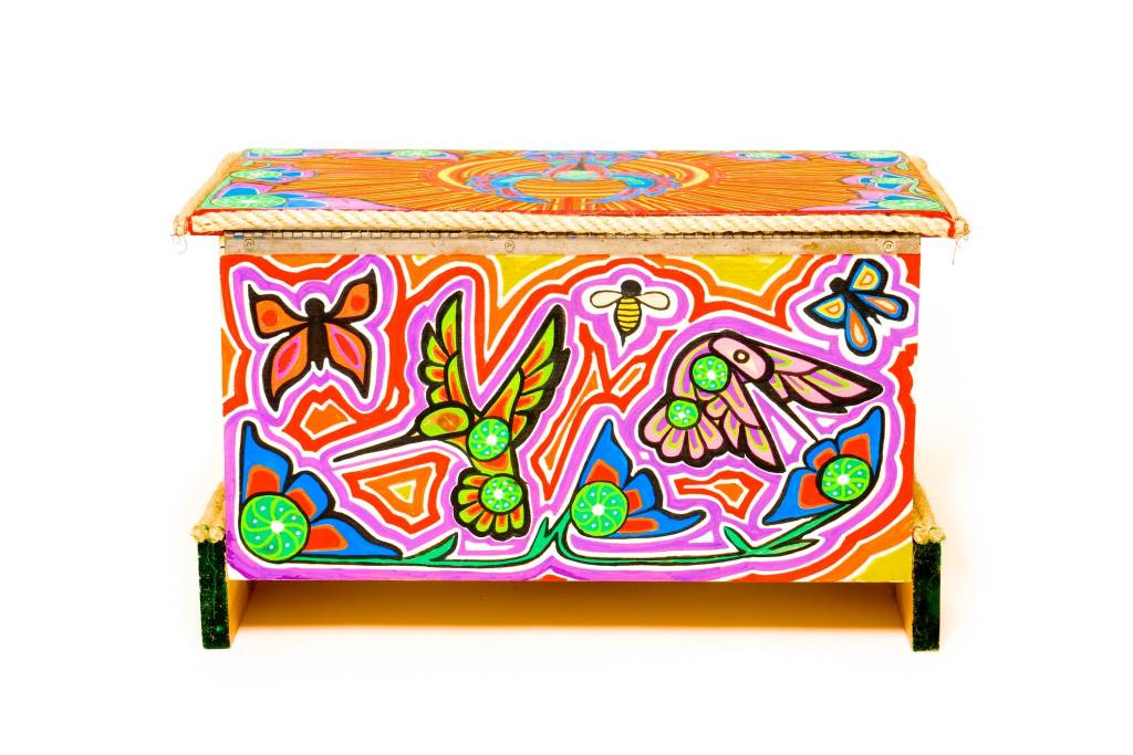 Hummingbird Box Chest Painted by Gyauustees (Nuchahnulth).