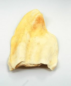 KRIJON LLC Cow Ear