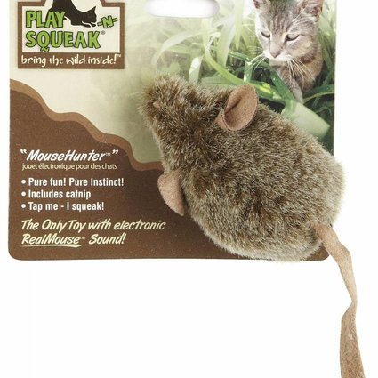 Play-N-Squeak Mouse Hunter