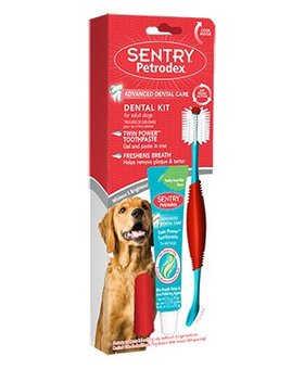 Petrodex Dog Dental Kit