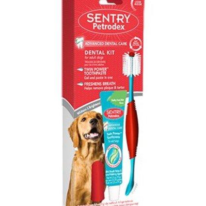 Petrodex Dog Dental Kit