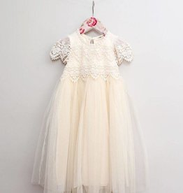 MaeLi Rose Lace and Tulle Midi Dress Ivory