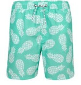 Snapper Rock International Mint Pineapple Pool Boardie