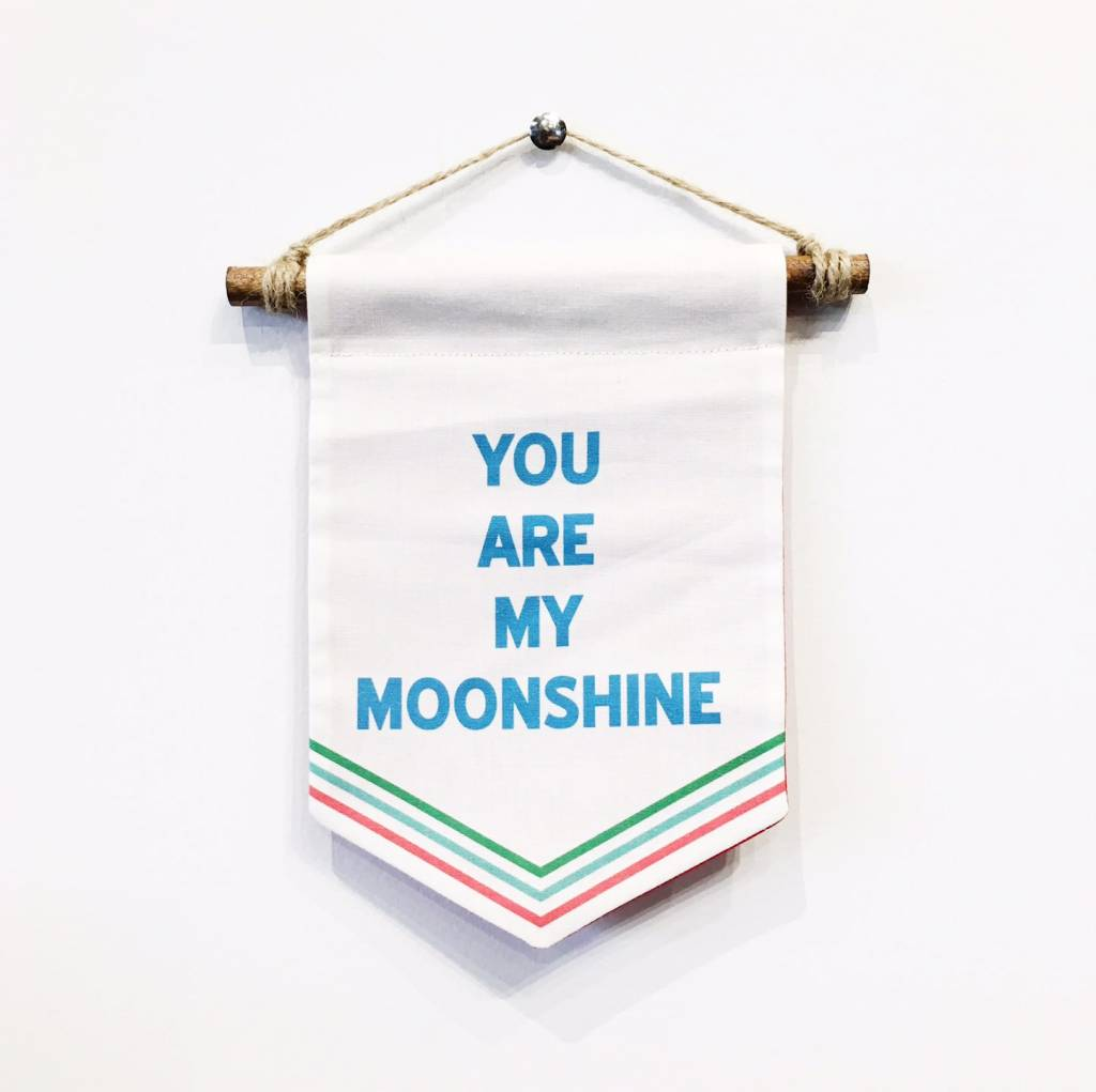 You Are My Moonshine Banner - Small