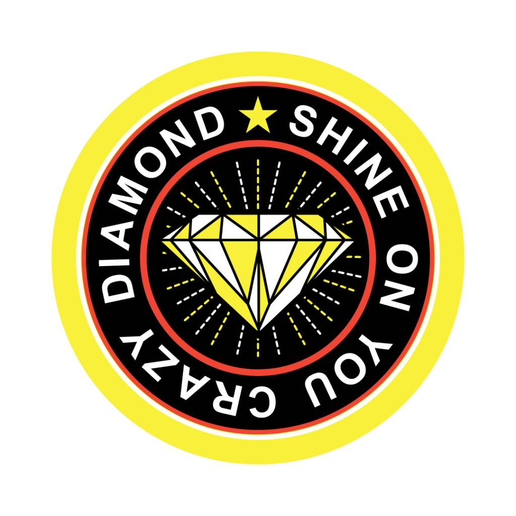 Shine On You Crazy Diamond Sticker