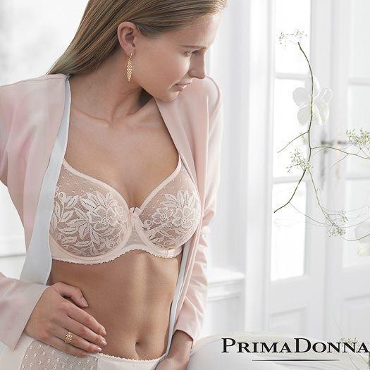 Prima Donna Divine - Seamless Lace Cup (non-Padded) - Prima Donna - 0162650