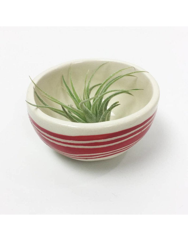 Striped Mini Bowls -Multiple Colors