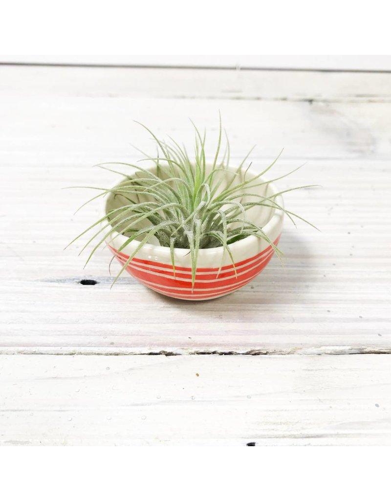 Striped Mini Bowls -Multiple Colors