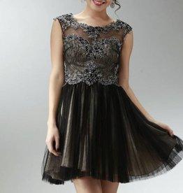 Black & Nude Illusion Short Dress