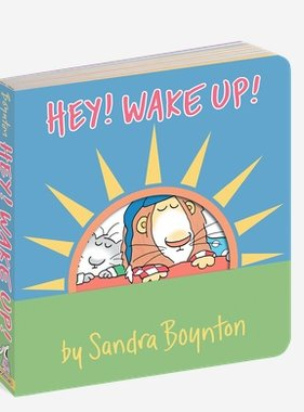 Workman Publishing Co BOYNTON Book: HEY! WAKE UP