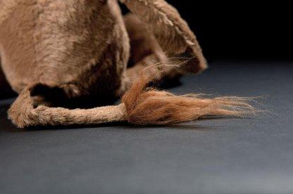 Sigikid BEASTS, 38715 Brave Hair