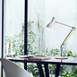Type 75 Desk Lamp Anglepoise + Paul Smith - Edition 1