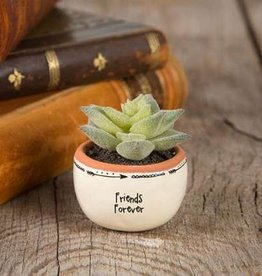 "Natural Life Friends Forever"" Succulent Keepsake"
