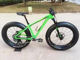 Specialized Fatboy Pro Trail Vert/Noir  Large Demo