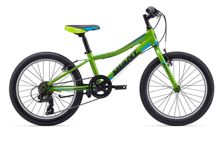 "Giant XTC Jr 20 Lite 20"" Green/Blue"