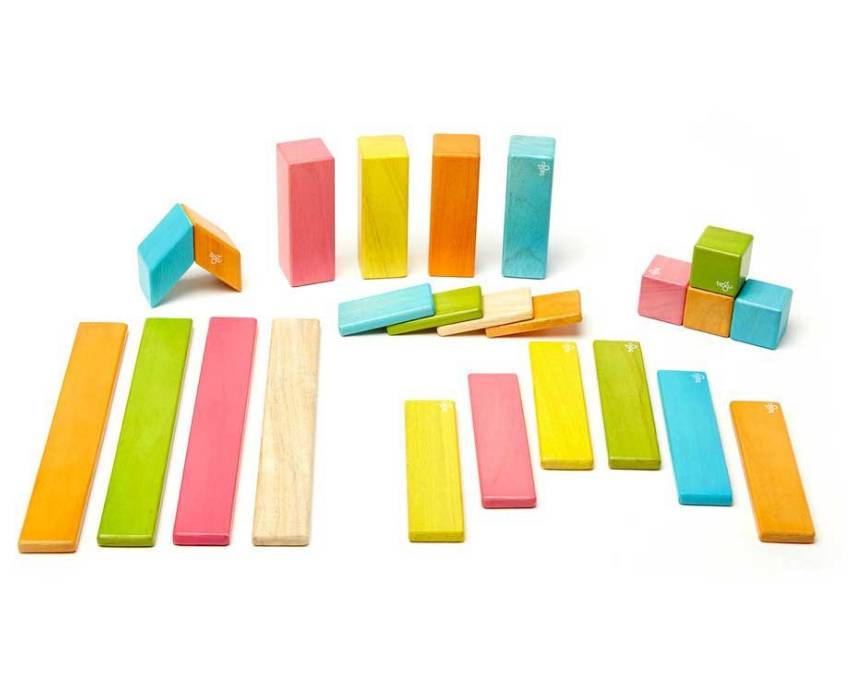 Tegu 24-Piece Set