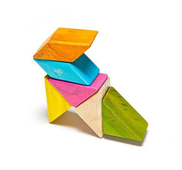 Tegu 6-Piece Pocket Pouch