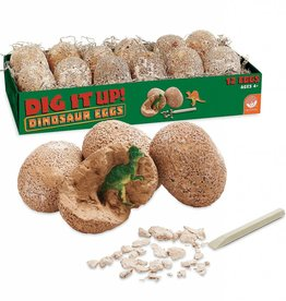 Dig-up Dinosaur Eggs