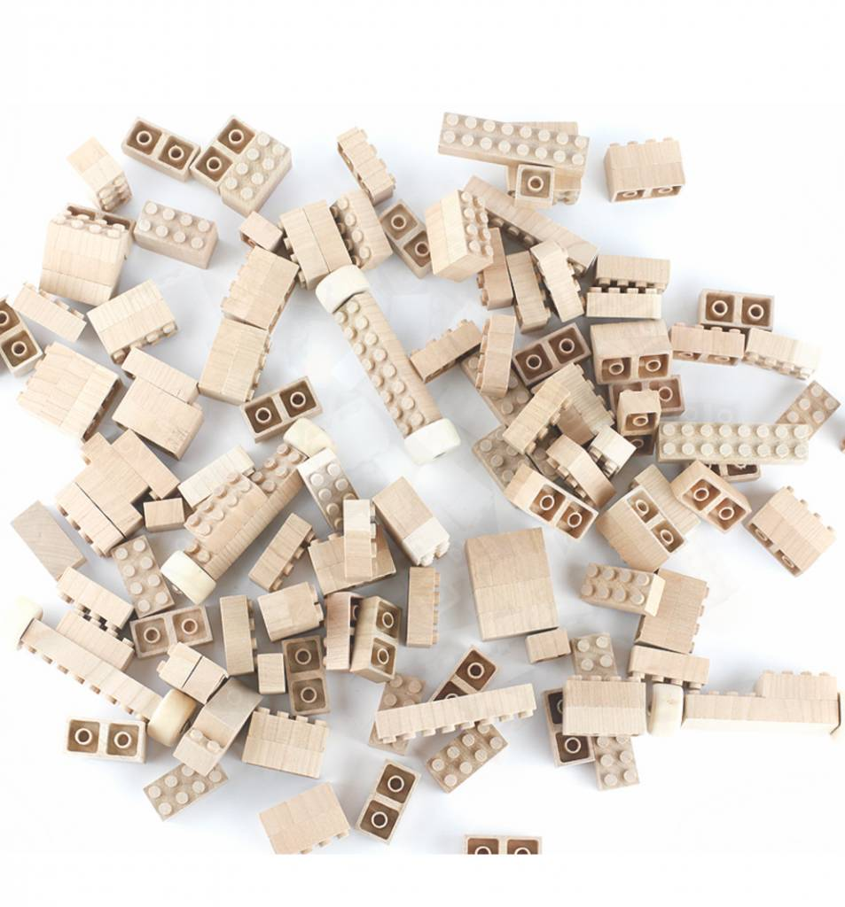 Eco-Bricks 145- pc