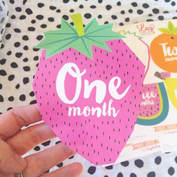 """LUCY DARLING """"TUTTI FRUTTI"""" MONTHLY STICKERS"""
