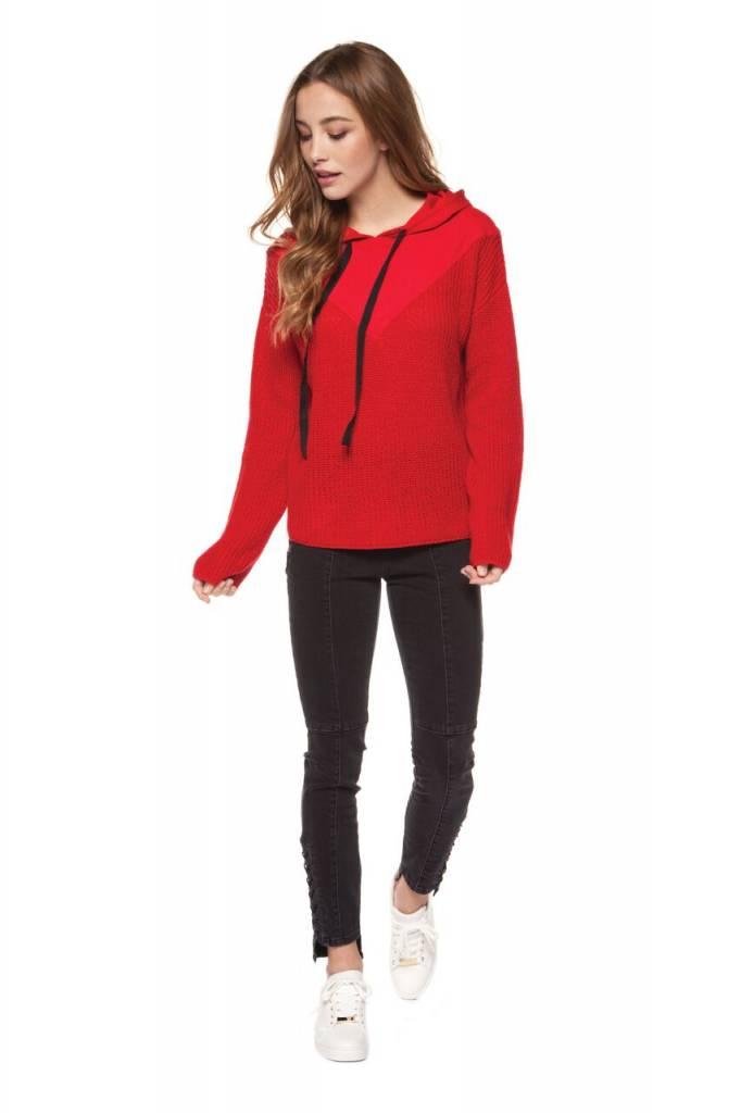 DEX CLOTHING HOODED SWAETSHIRT 1227753