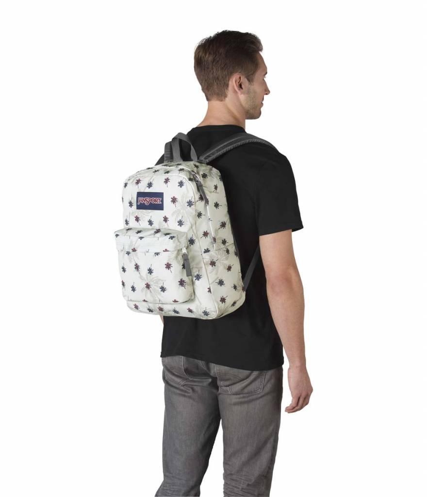Jansport Jansport Superbreak Backpack Goose Grey Urban Oasis