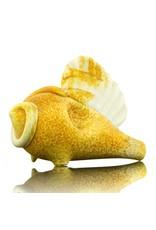 Hardman Glass Shell Spoon Tan