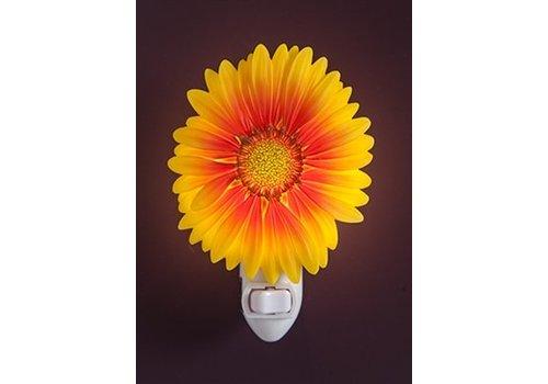 Ibis Orchid Design Gaillardia Daisy Night Light