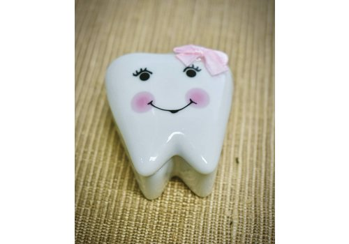 Tooth Fairy Box - Pink
