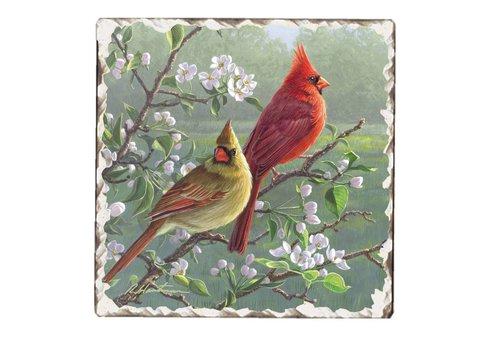 Cardinals Coaster