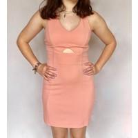 Bodycon Dress Blush