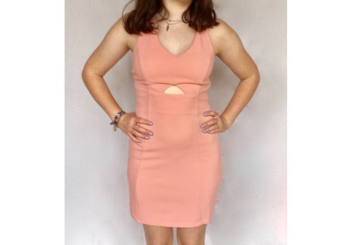 Bodycon Dress Blush