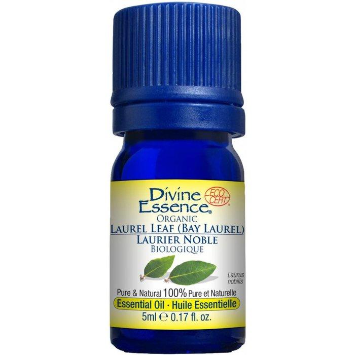 Huile essentielle Laurier Noble bio (Laurus nobilis) 5 ml