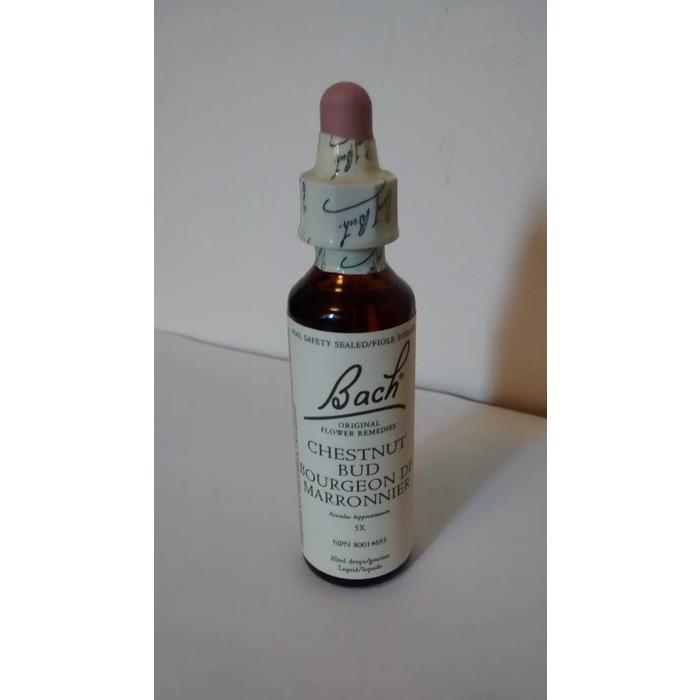 Bourgeon de marronnier (chestnut bud) 20 ml