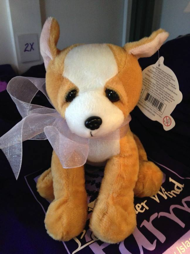 """Stuffed Chihuahua, """"Chewy"""", 8"""""""