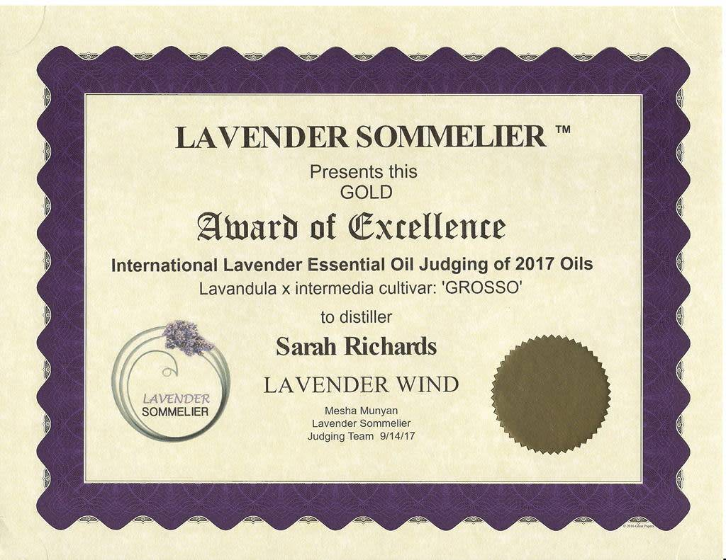 Lavender Wind Grosso Essential Oil 1oz