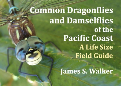 Book, Common Dragonflies by James S. Walker
