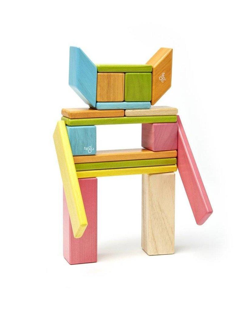 Tegu 24-Piece Set - Tints