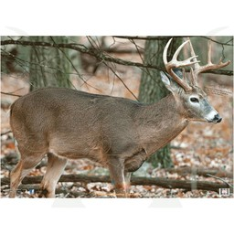 "Nice Targets TNT Deer 1BR Target 28"" x 40"""