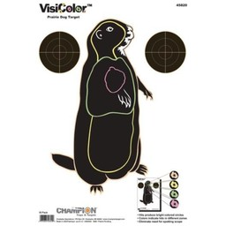 Champion VisiColor Target (10-Pack)