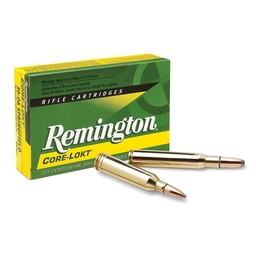 Remington Remington Core-Lokt Centerfire Ammunition (20-Rounds)
