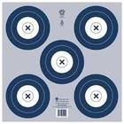NFAA NFAA 5-Spot Indoor Target (Blue)