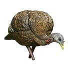 Avian-X Avain-X LCD Feeder Hen Turkey Decoy