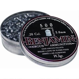 Benjamin Hunting Pellets .20 Cal. 14.3 Grain (500-Count)
